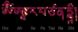omarapatzanadhi2